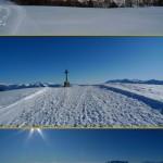 sandra hoffmann's winter stroll