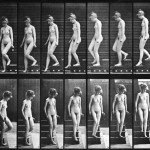 descending stairs & turning around from the animal locomotion series, by eadweard muybridge 1884-1885